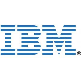 IBM vCenter Server 5 Fnd vSph5