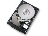 HGST 73GB SCSI 10000RPM 8MB 80PIN
