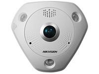 Hikvision 4000x3072, 20fps, Dual-stream