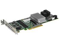 Ernitec 12GB/S per port, HW controller