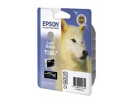 Epson Ink Light Black