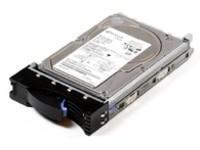 IBM 73GB 10K U160 SCSI HS SL BULK