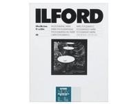 Ilford 1x 25 MG IV RC 25M  13x18