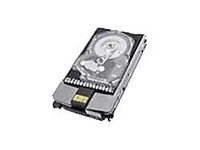 Hewlett Packard Enterprise 72GB hot-swap dual-port FC HD