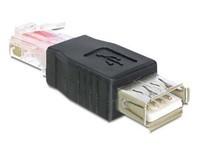 Delock USB Adaptor USB -> RJ45 fe/ma