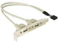 Delock USB 2.0 9pin int. > 2x A