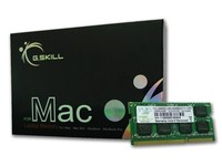 G.Skill 4GB DDR3-1600
