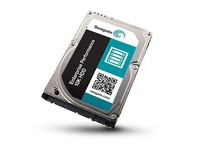 Seagate E Performance 600GB 10KRPM