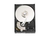 Western Digital 250 GB 7200 RPM 8MB SATA II