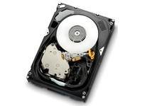 HGST 300GB SAS 15000RPM 16MB