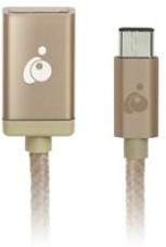 IOGEAR USB-C To USB TYPE-A, Gold