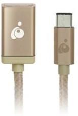 IOGEAR USB-C To USB TYPE-A, Gold