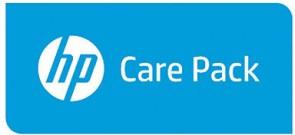 Hewlett Packard Enterprise 3y NBD Exch 501 Wr