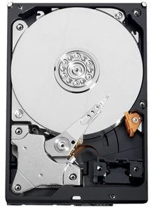 Western Digital HDD AV-GP, 3.5\'\', 500GB,