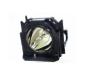 MicroLamp Projector Lamp for Panasonic