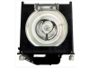 MicroLamp Projector Lamp for HP