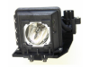 MicroLamp Projector Lamp for PLUS