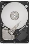 IBM TC 80GB EIDE ATA-100 HD